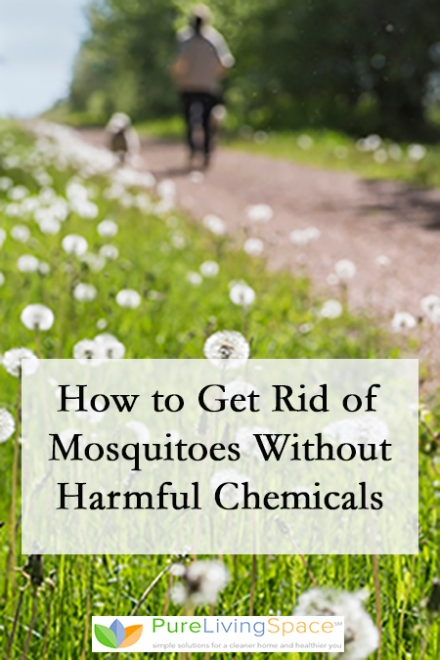 How to Get Rid of Mosquitoes Without Harmful Chemicals
