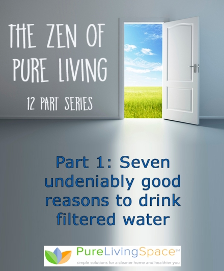 12 Week Series Zen of Pure Living