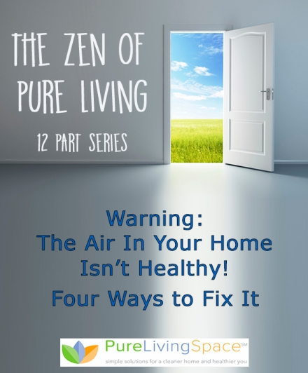 Warning: The Air In Your Home Isn't Healthy! Four Ways to Fix It